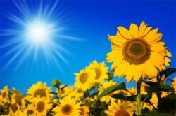 A napelemek energiaforrása